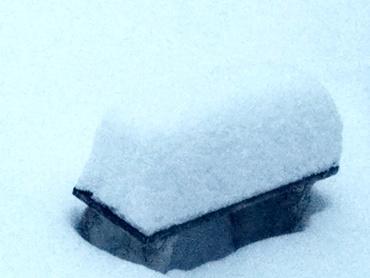 Snow BENCH 370